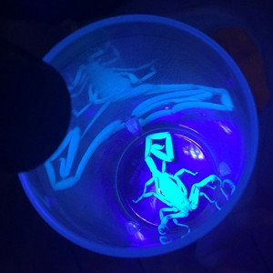 A glow in the dark scorpion. Photo by Taylor Barton