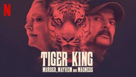 Tiger King: Murder, Mystery and Mayhem